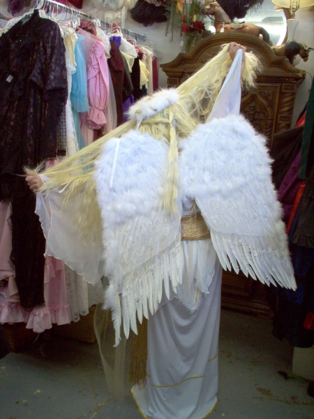 Bible Angel costume, Angel Costumes, Angel Robes, Angel Wigs, Angel Wings and Angel Tunics for Adults and Children in Dallas and North Texas. Theatrical, Church Pageants