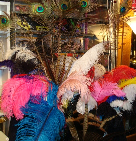 DFW Feathers and Boas, Ostrich, Phesant feathers Dallas, Peacock Feathers, exotic feathers and boas in dallas, peacock feathers in dallas, ostrich feathers in dallas, Peacock Feather Boas, Exotic Costume Feathers, Exotic Feather Boas for Hats, Costumes & Accessorizing Feather Boas