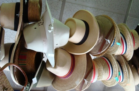 Ladies Straw Skimmer Hats
