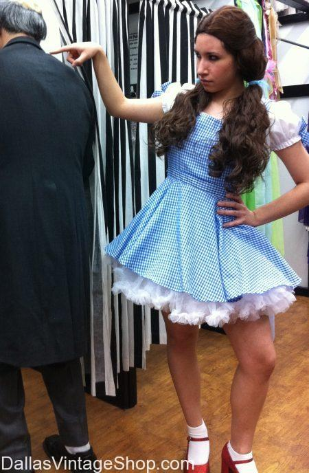Dorothy and the Wizard of Oz costume